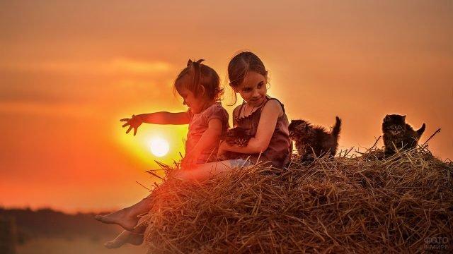 Детки с котятами на сене