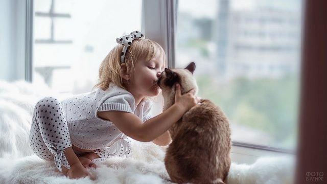Девочка целует кошку