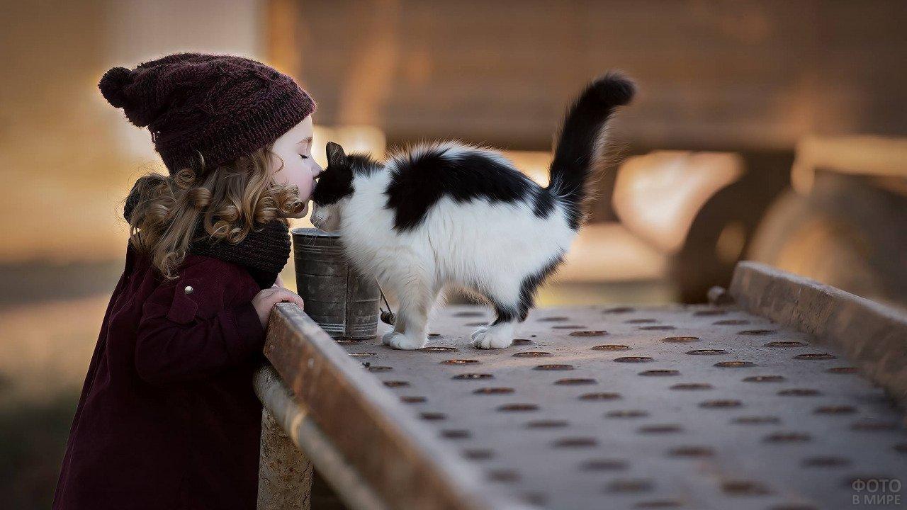Девочка на улице целует чёрно-белую кошку