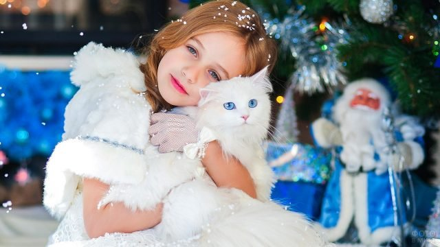 Девочка с белым голубоглазым котом