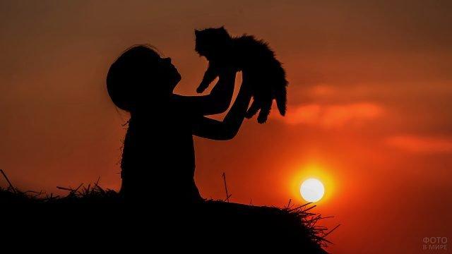 Девочка с котёнком на закате