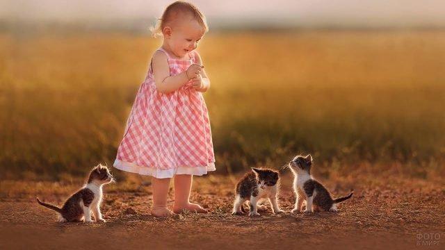 Девочка с тремя котятами в поле