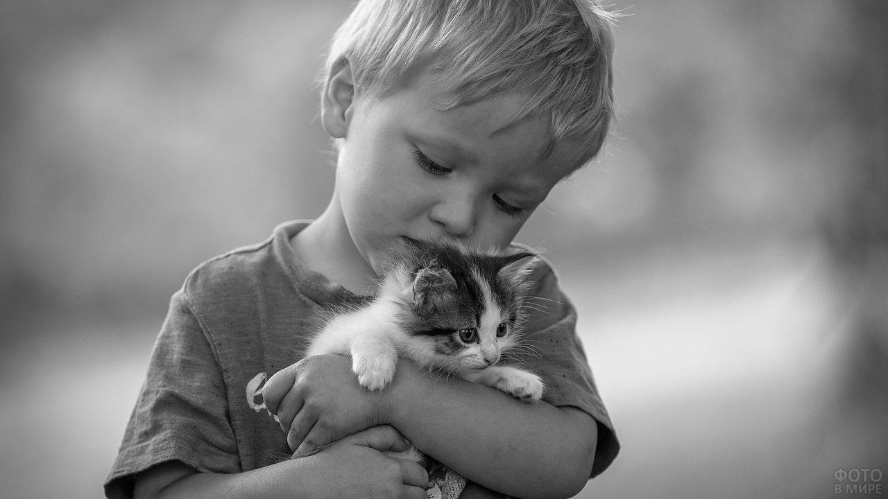 Мальчик держит на руках трёхцветного котёнка