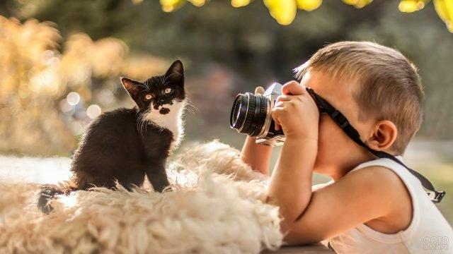 Мальчик фотографирует котёнка