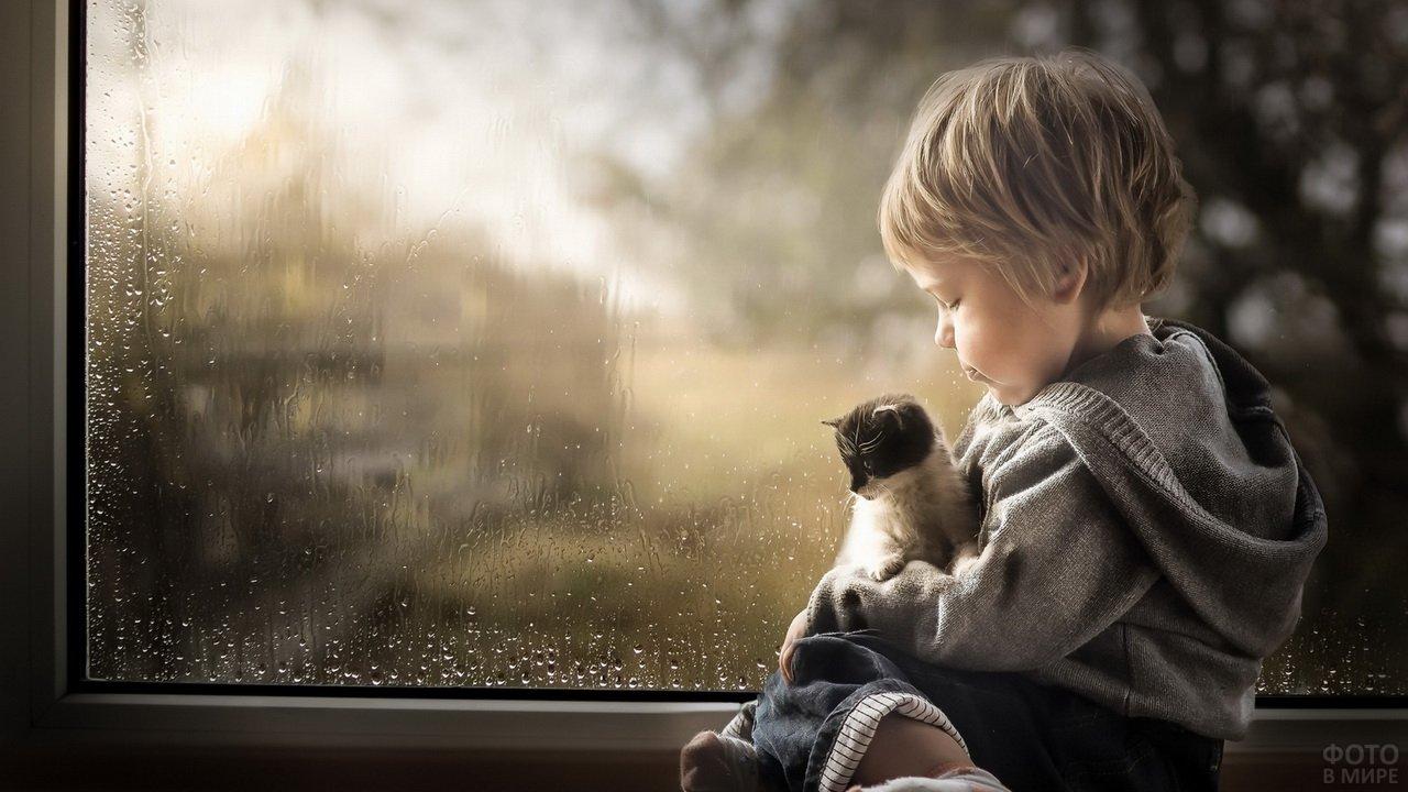 Мальчик с котёнком на руках сидит на подоконнике