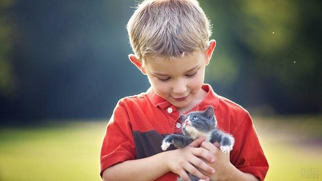 Мальчик в яркой футболке держит маленького котёнка на руках