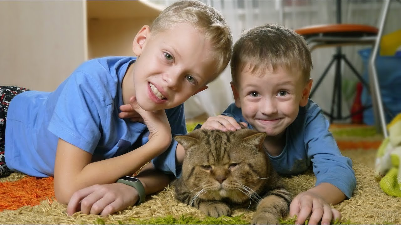 Мальчишки с грустным котиком
