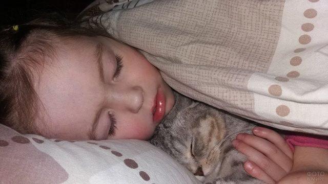 Ребёнок с котом под одеялом