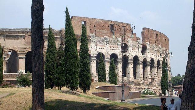 Вид на стены Колизея в Риме из тени деревьев