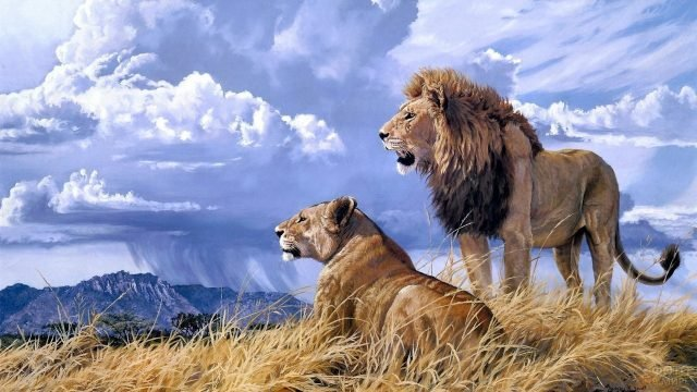 Картина изображающая льва со львицей на фоне гор