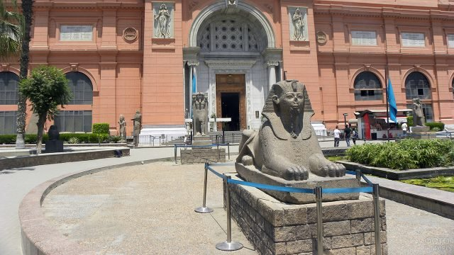Сфинкс перед Египетским музеем в Каире