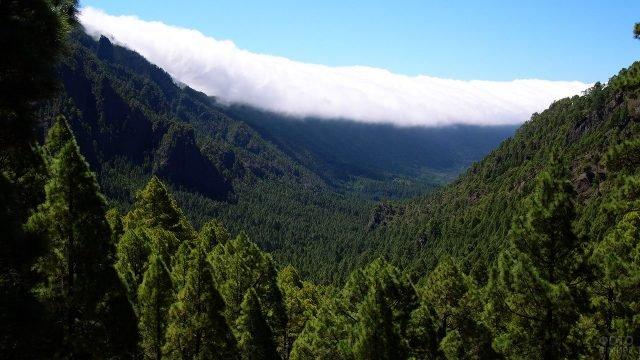 Изумрудная долина Национального природного парка острова Ла-Пальма
