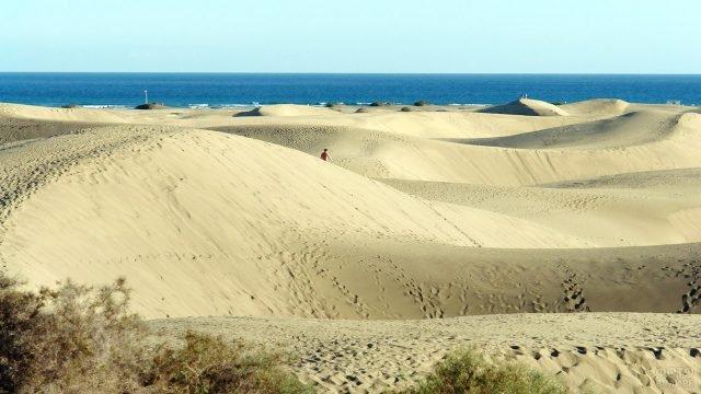 Песчаные дюны на берегу острова Гран-Канария