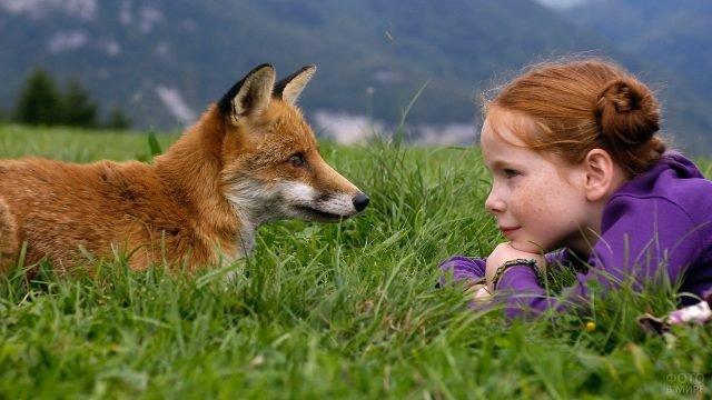 Девочка с лисой смотрят друг на друга