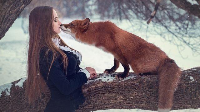 Красивая девушка с лисичкой