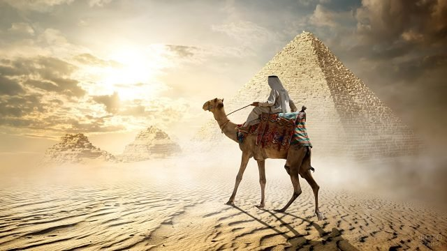Бедуин с верблюдом на фоне пирамид