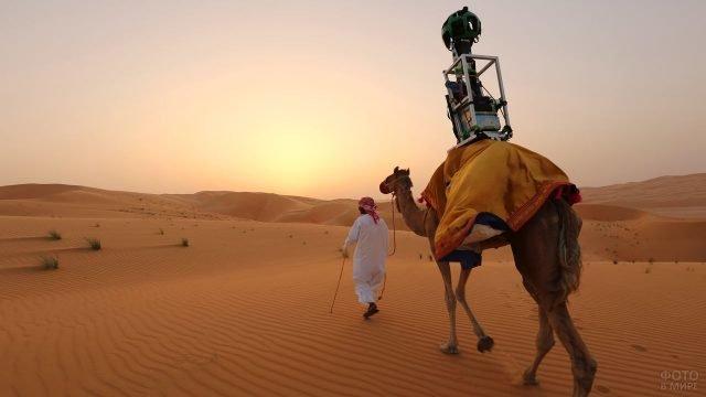 Бедуин ведёт гружёного верблюда по пустыне