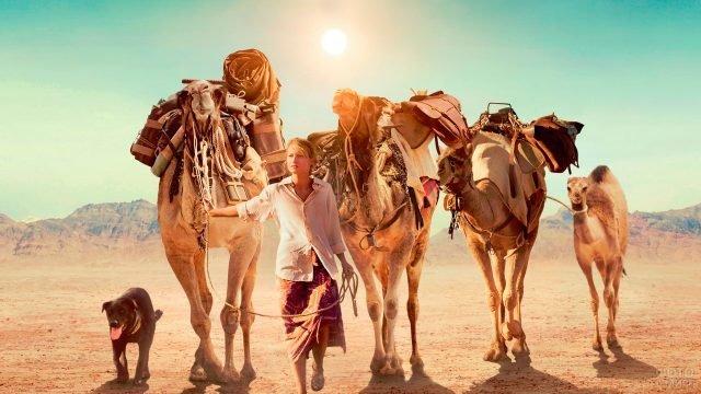 Девушка с собакой ведут верблюдов