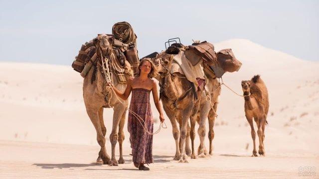 Девушка в пустыне ведёт верблюдов