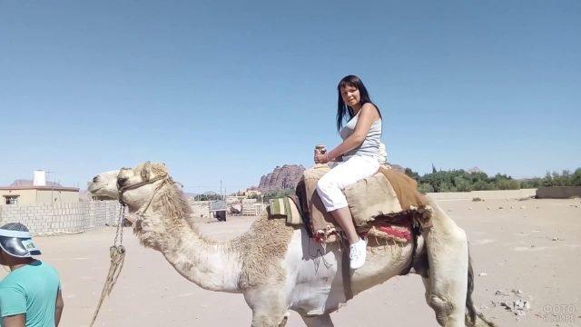 Туристка верхом на верблюде