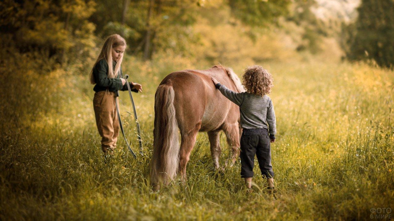 Детки выгуливают пони