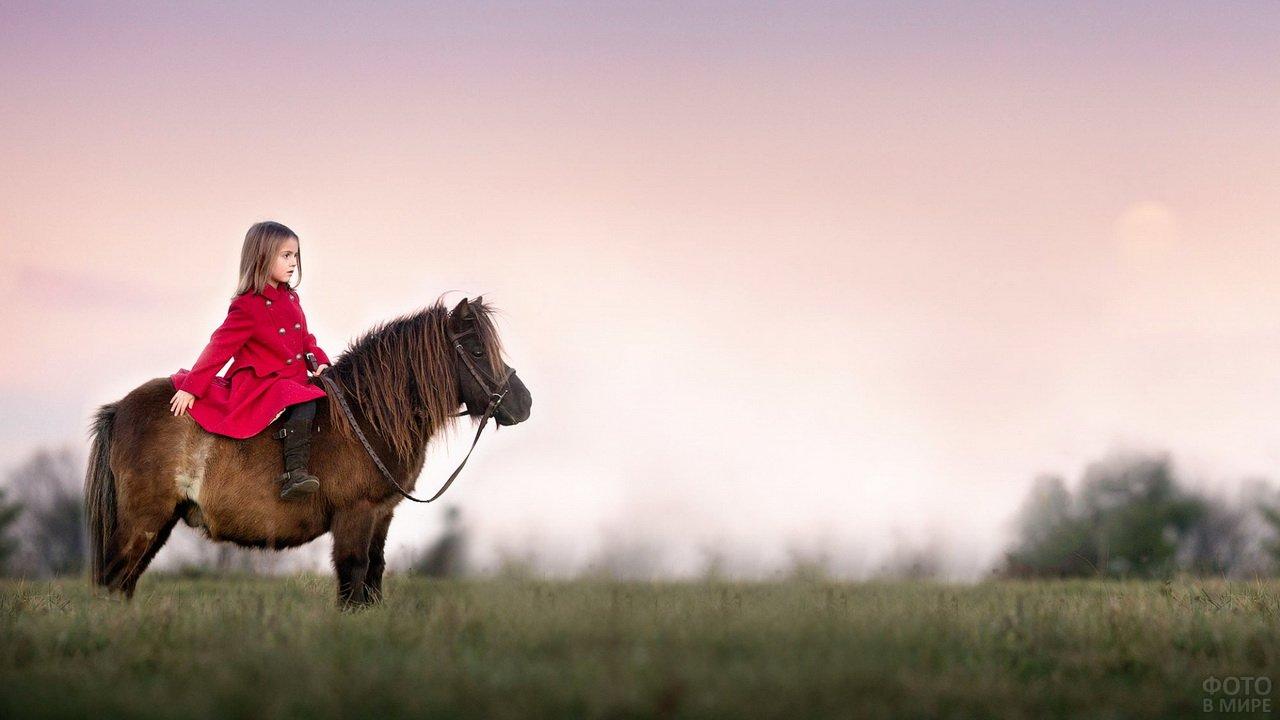 Девочка в красном пальто верхом на пони