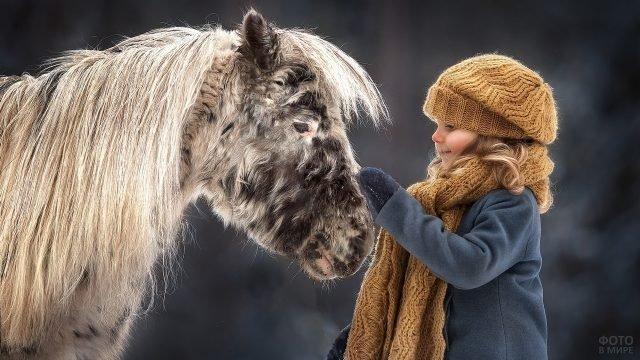 Девочка в вязанной шапке и шарфе гладит пони