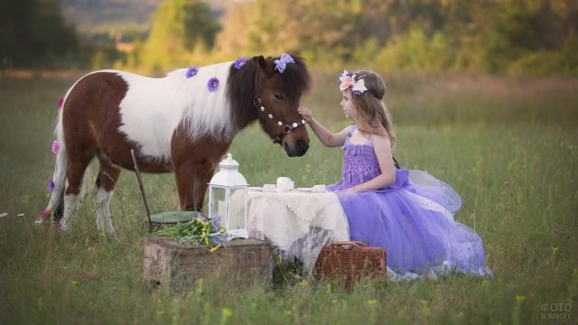 Маленькая барышня за игрушечным столиком и пони