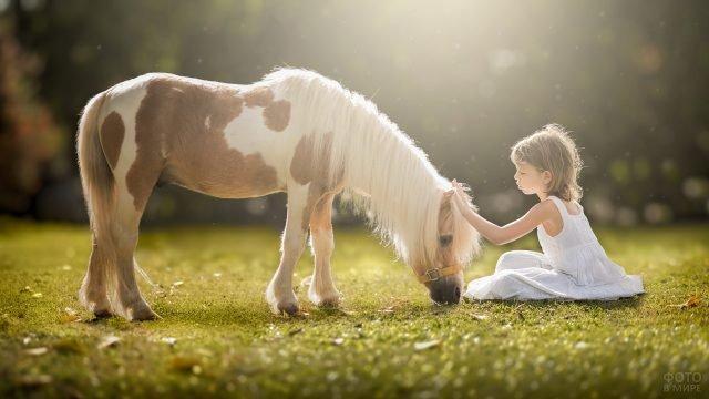 Маленькая девочка в белом платье гладит пони, сидя на лужайке