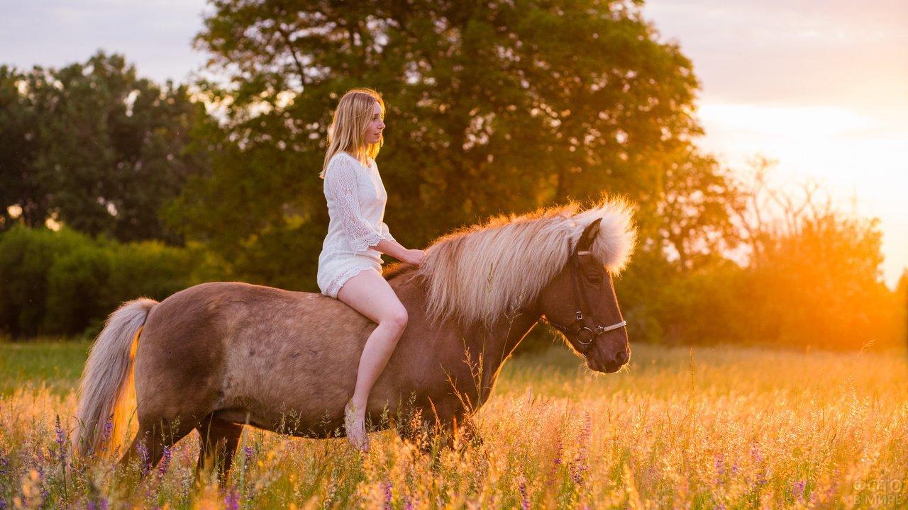Блондинка скачет верхом на лошади на фоне заката