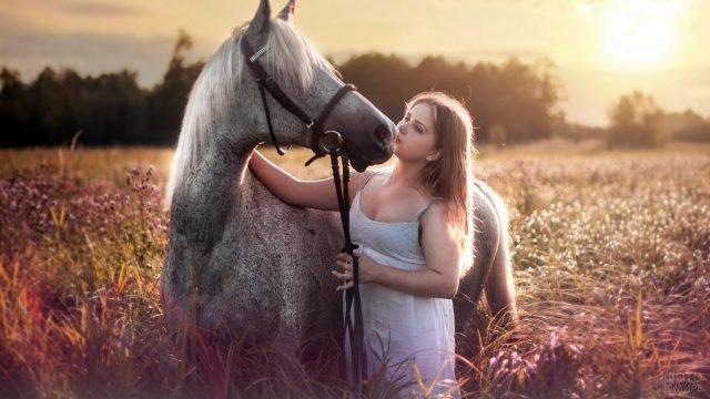 Девушка гладит коня в поле на закате