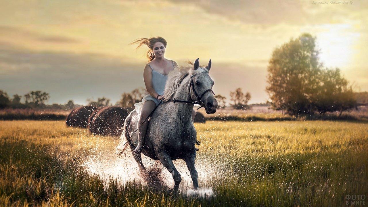 Девушка мчится верхом на серой лошади