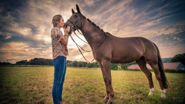 Девушка на ферме целует коня в морду