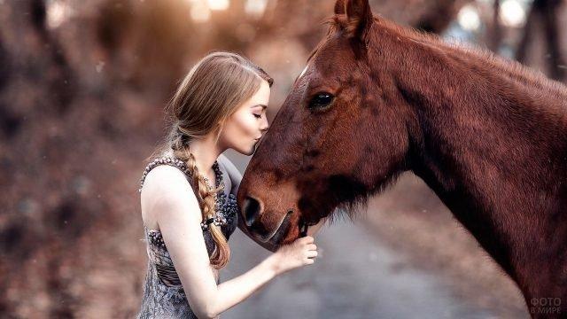 Девушка с косой целует лошадь