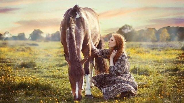 Девушка с лошадью на закате солнца в поле