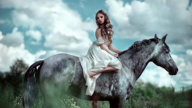 Девушка с ромашками в волосах на серой лошади