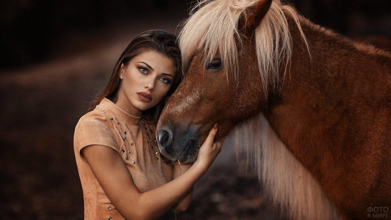 Девушка с выразительными глазами с коричневой лошадью