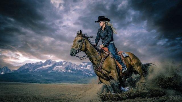 Девушка в наряде ковбоя мчится на гнедом жеребце