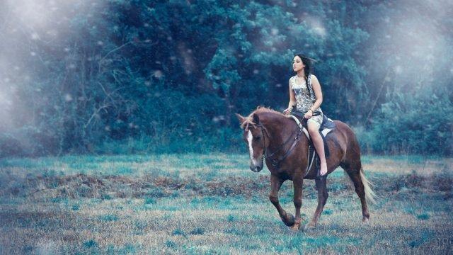 Девушка верхом на коне на фоне леса