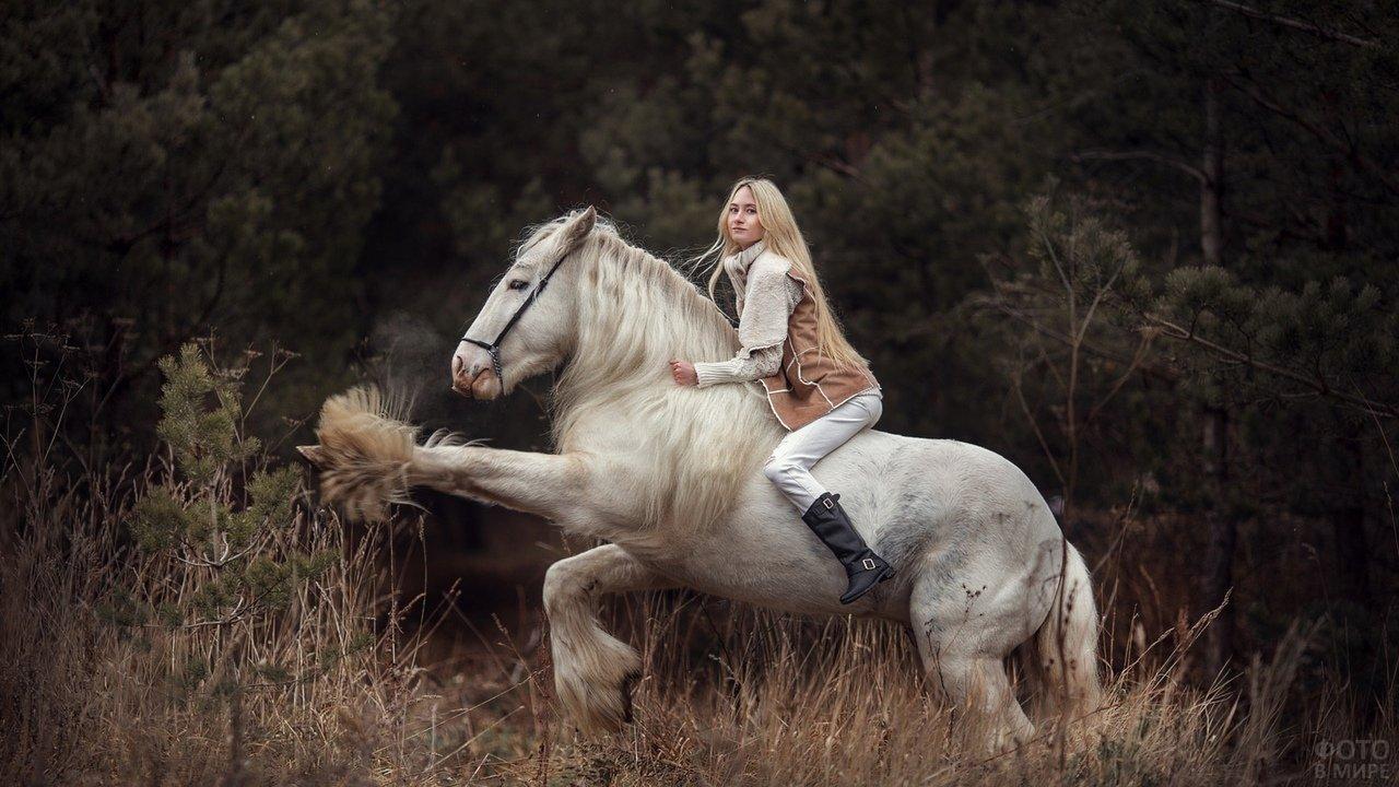 Конь с мохнатыми ногами вышагивает под блондинкой