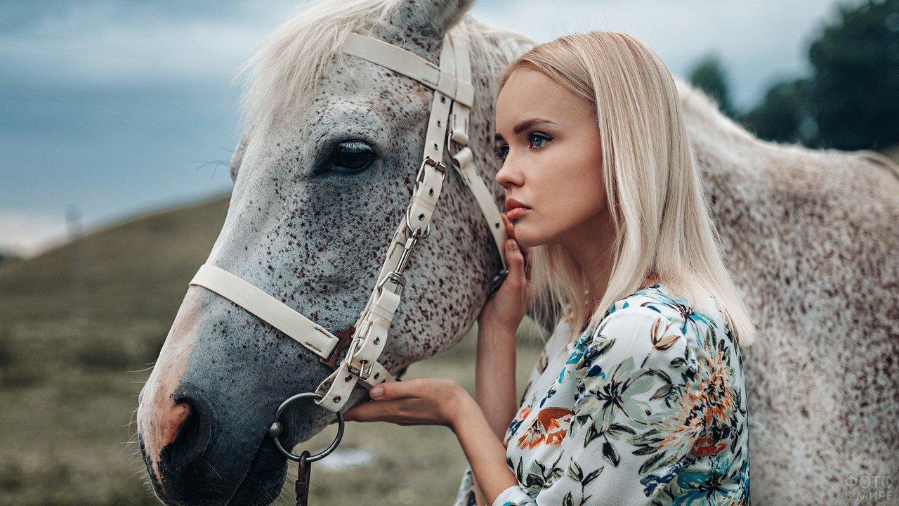 Красивая девушка и лошадь белая в крапинку