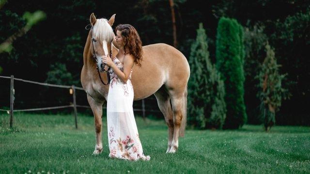 Прекрасная девушка с красивой лошадью на поляне