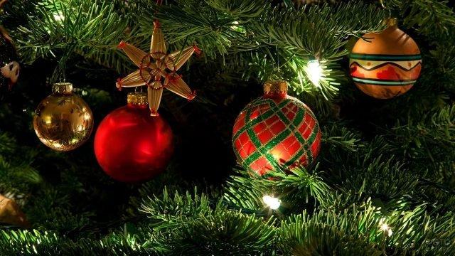 Игрушки в красно-золотой гамме среди новогодних огней на зелёных пушистых ветках