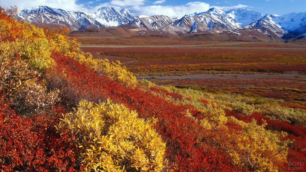 Красно-жёлтая Аляска