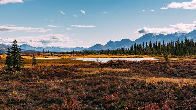 Осенний пейзаж Аляски