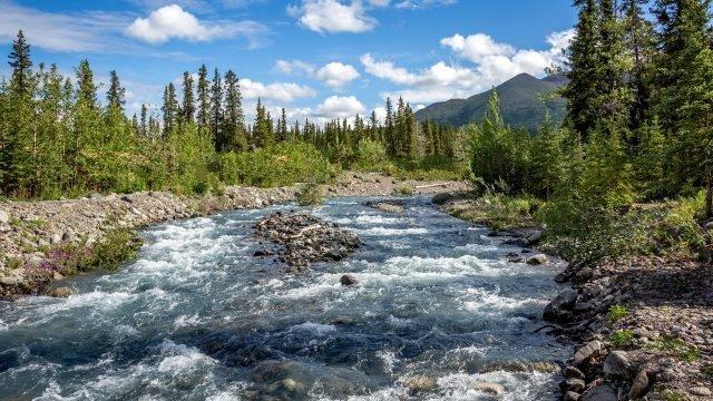 Стремительная горная река Аляски