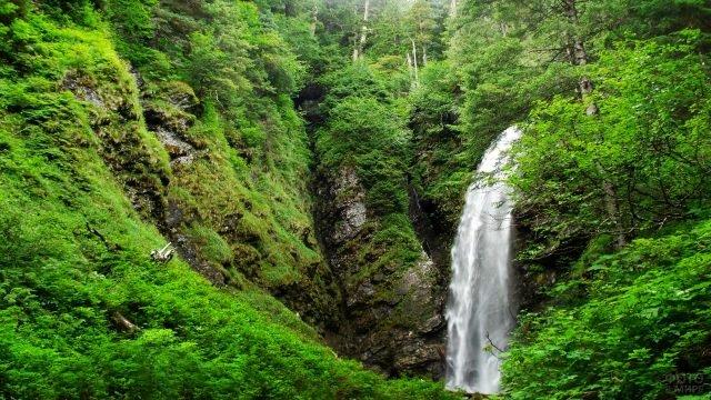 Высокий водопад в зелёных лесах Аляски