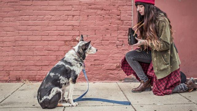 Девушка фотографирует пятнистого пса