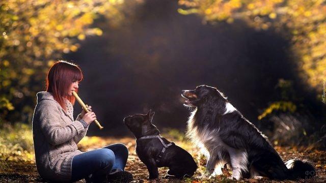 Девушка играет собакам на дудочке