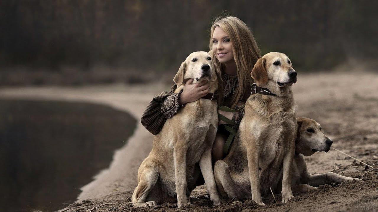 Девушка на берегу с тремя собаками